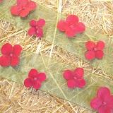 Blumen und Perlenbänder aus Organza