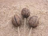 Mintolla Ball natur